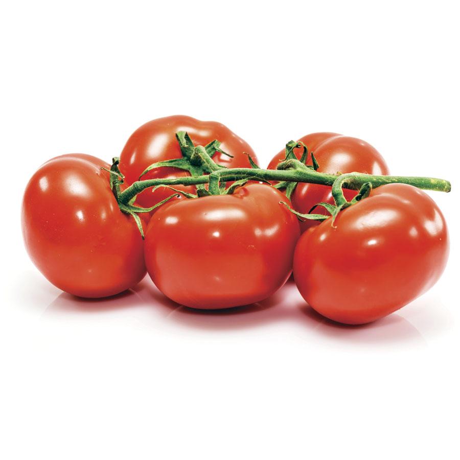 Comprar tomate rama mayoristas