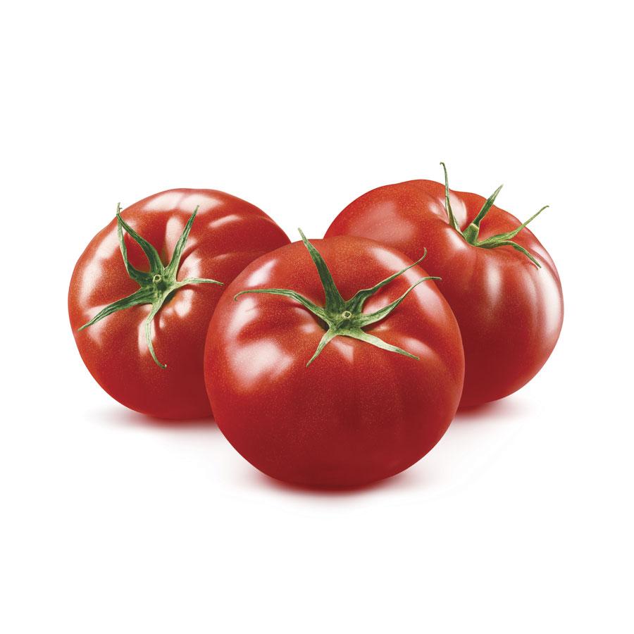 venta de tomate redondo Almería
